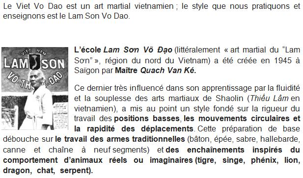 Lam Son Vo Dao
