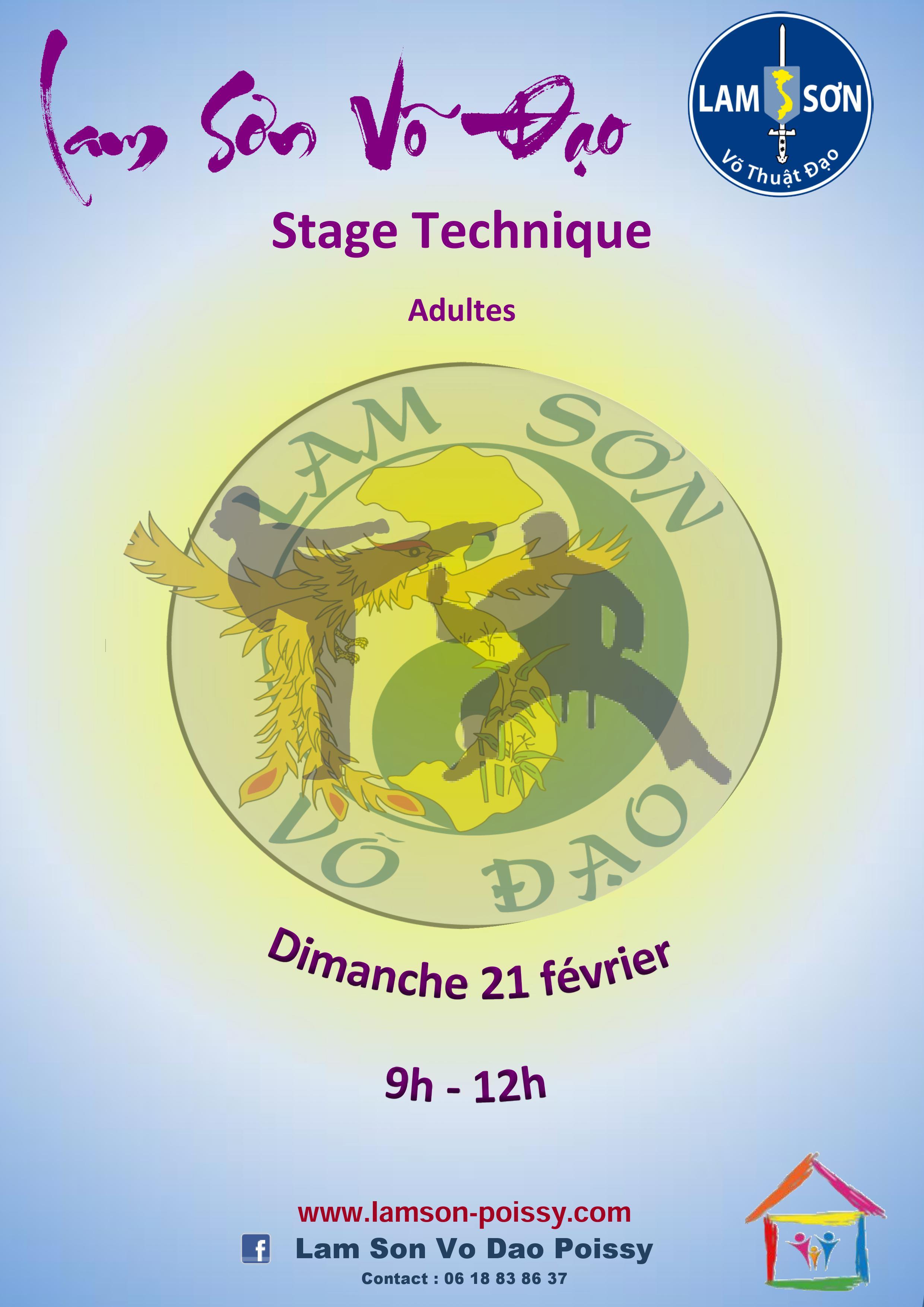 Affiche stage JPG 21.02.16